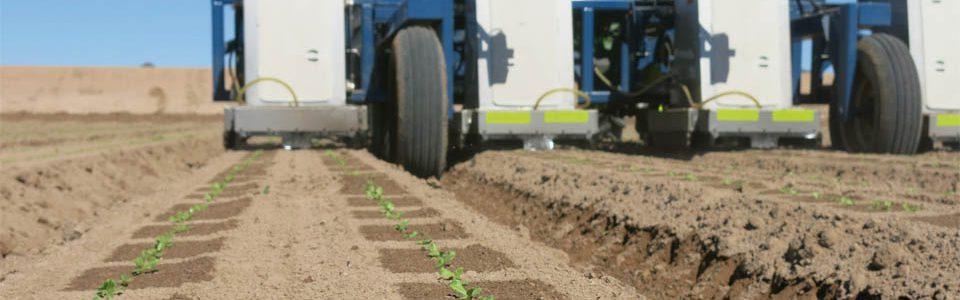 Precíz és zöld: innováció a mezőgazdaságban