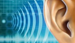 Hang vagy zaj? – érték vagy probléma?